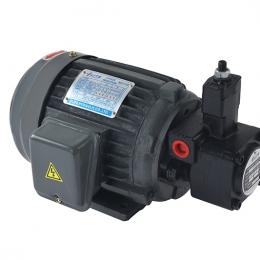 ELITE艾利特电机泵组1HP+VP-20